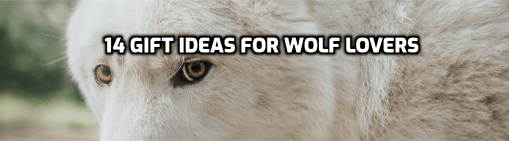 14 Gift Ideas for Wolf Lovers