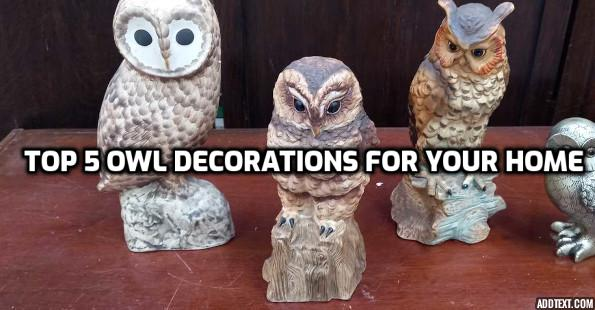 Top 5 Owl Decorations for Your Home